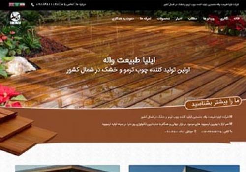 طراحی سایت چوب ترمو رشت
