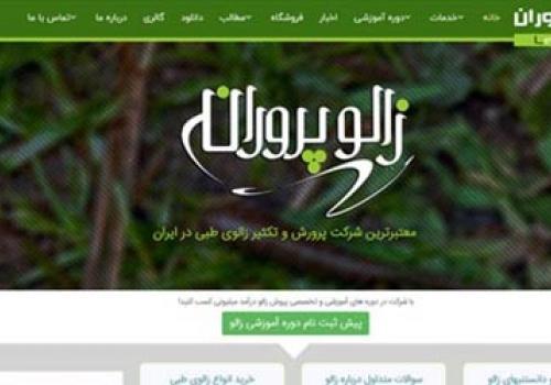 طراحی سایت شرکت زالو پروران رشت
